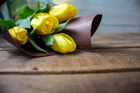 a beautiful yellow tulips on a grey wooden background
