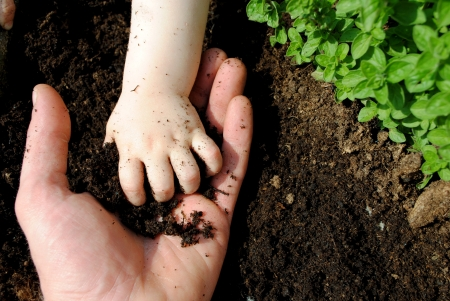 enviroment: father and daughter hands play with soil in the garden