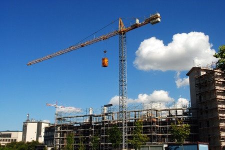 whooping: Yellow whooping crane close to unfinished buildings