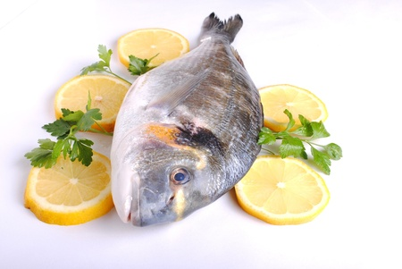 gills: raw sea fish with lemon slices and parsley