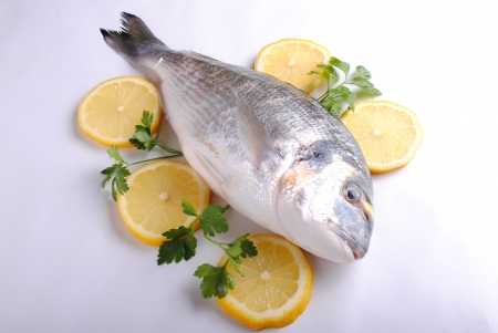 raw sea fish with lemon slices and parsley Stock Photo - 15506150