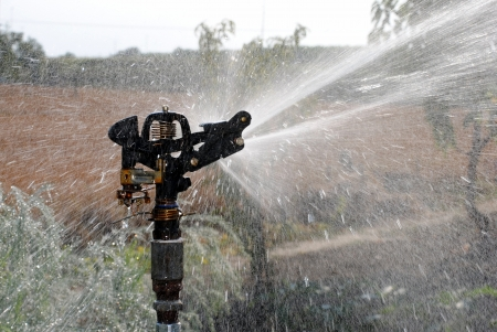 water pump watering an organic garden Stock Photo