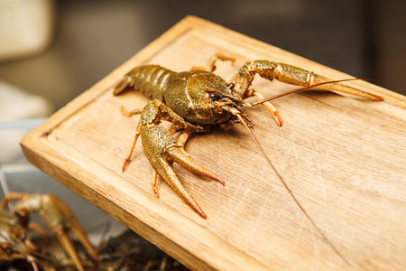 Fresh crawfish on wooden board,green lobster ready to be boiled