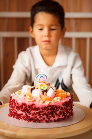 boy sits in front of a cake and makes a wish. the child anticipates blowing out the candles.