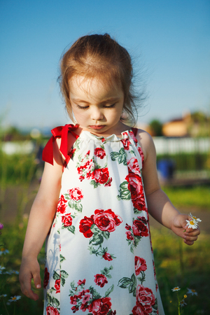 cute girl in summer dress collects wildflowers. beautiful child walks in nature.