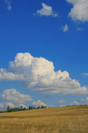 blue sky with airy clouds and the yellow field. Banco de Imagens