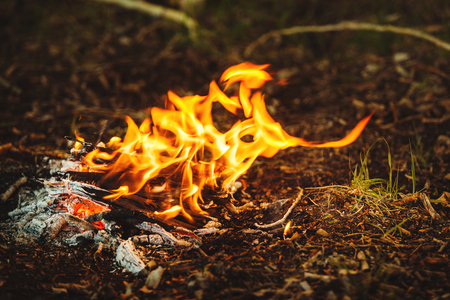 Abandoned campfire at the campsite. Consequences careless of fire. Stock Photo