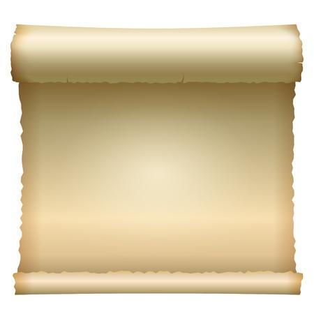 papiro: Aperto scroll Vettoriali