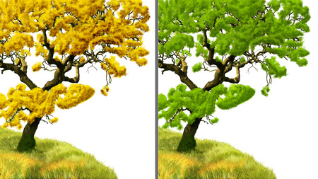 branchy: The drawn tree isolated on the white background, two colors  gold and green