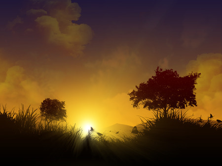 early in the evening: A magical night landscape at sunset, silhouettes of trees and grass in the sun and sky with clouds