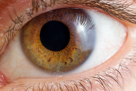 Single oog close-up Stockfoto