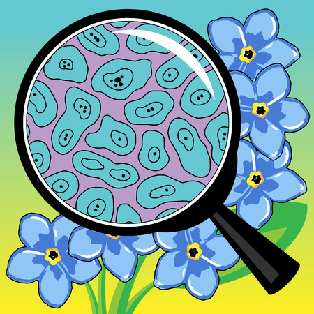 ribosomes: illustration biological cells of flower a petal watch through a magnifier