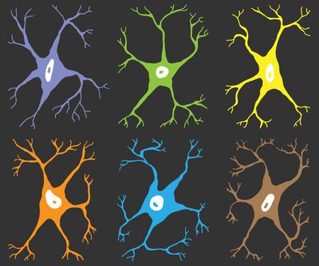 nerve cells: A set of six elements nerve cells multicolor