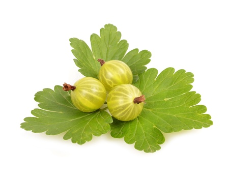 fresh gooseberries and leaves isolated on white