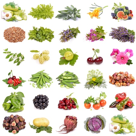 large collection of fruit, berries vegetables ,organic agriculture, isolated on a white background