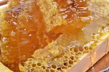fresh  honeycombs with honey