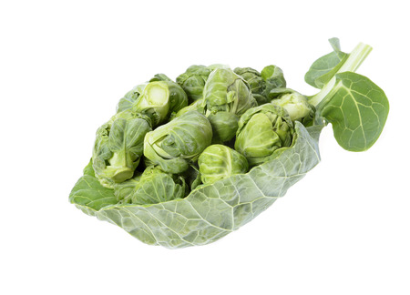 compromised: brussels sprouts compromised on green leaf  isolated on white background