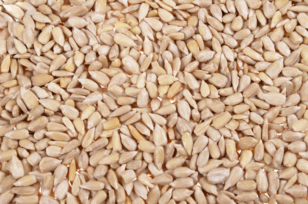 hulled: a background of fresh ,  hulled sunflower seeds  Stock Photo