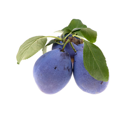 Delicious blue plums in a wooden bowl, selective focus,isolated white background