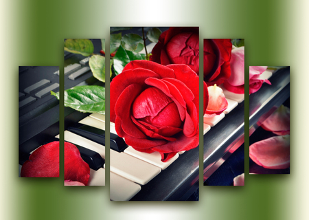 constituting: red rose on keyboard divided by five parts constituting the single hole image