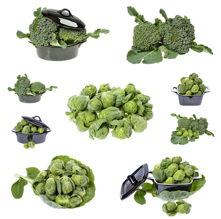 Fresh broccoli and brussels sprouts in closeup isolated on white background Stock Photo