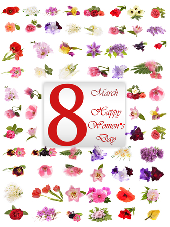 Happy Womens Day, spring flowers
