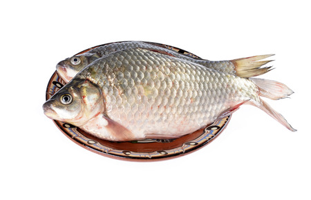 Two carassius - crucian carp on a  plate,white background