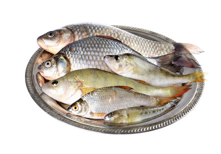 Fresh fish (Scardinius erythrophthalmus,carassius) on a  plate,on an isolated white background