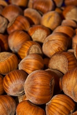 filbert: Wood nuts - a filbert