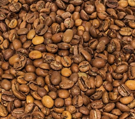grains of coffee: Los granos de caf� Foto de archivo