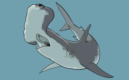 pez martillo: El tibur�n martillo sobre un fondo azul