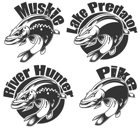 pike: vector illustration of pike fishing emblems and logos