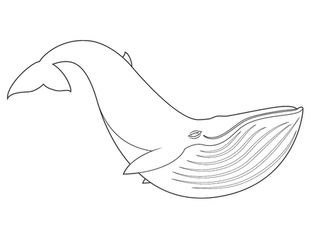 bleached: illustration of a blue whale on white background with black outline for kids and coloring book Illustration