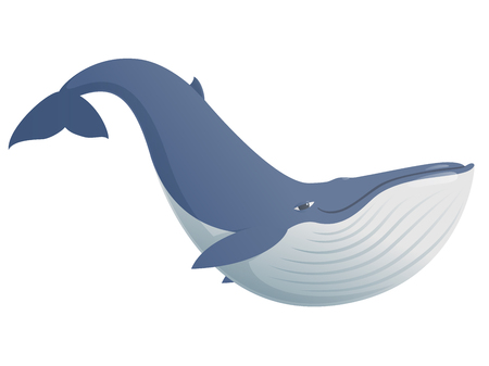 blue whale: Cartoon blue whale funny and cute, illustration