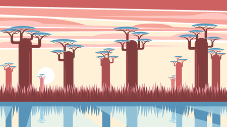 African landscape with sunset and baobab trees standing near a river or lake. Nature of Madagascar vector flat illustration. Africa sunset background.
