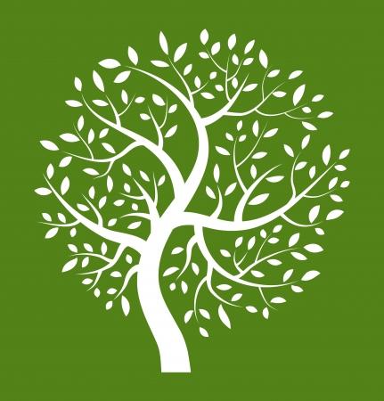arbre automne: Ic�ne Arbre blanc sur fond vert Illustration