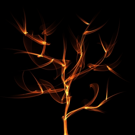 tree  flame photo
