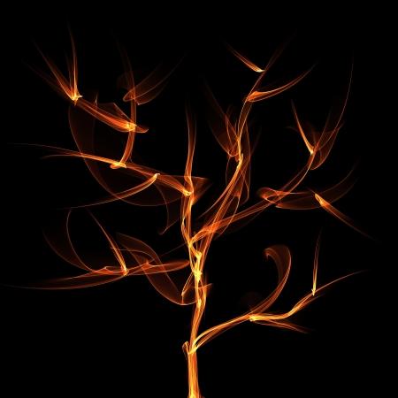 tree  flame Stock Photo - 15964932