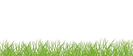 Green grass lawn banner. Border frame isolated transparent background. On white background. Ecology purity and nature. Vector flat style colorful illustration.