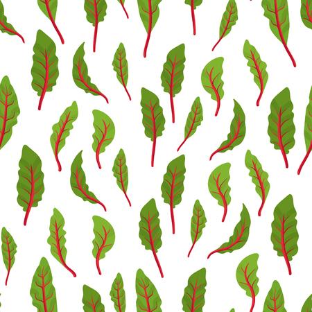 Chard leaf pattern. Leaf stalks plant repeat. Swiss chard. Vector illustration on white background. Beta vulgaris. Stock Illustratie