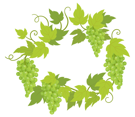 Grapevines plant frame circle banner. Round border grape frame. Place for text name or logo. Grapes green leaves. Vector flat Illustration.
