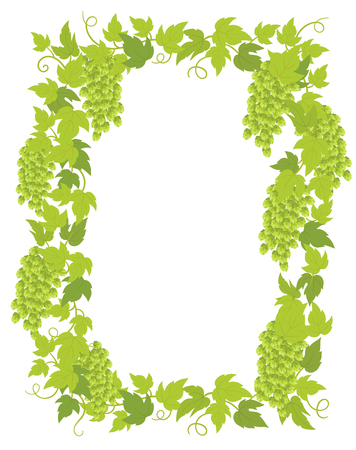 Hop plant frame banner. Border frame isolated transparent background template. Hop green leaves and cones lupulus humulus brewing. Vector flat Illustration for beer shop or cafe advertising. Place for text. Illustration