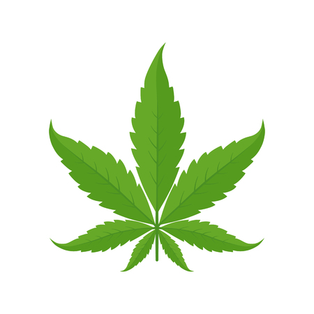 Marihuana-Blatt. Symbol oder Logo. Grün auf weißem Hintergrund. Hanfpflanze. Cannabis-Indica. Isolierte Vektor-Illustration. Medizinisches Cannabis.