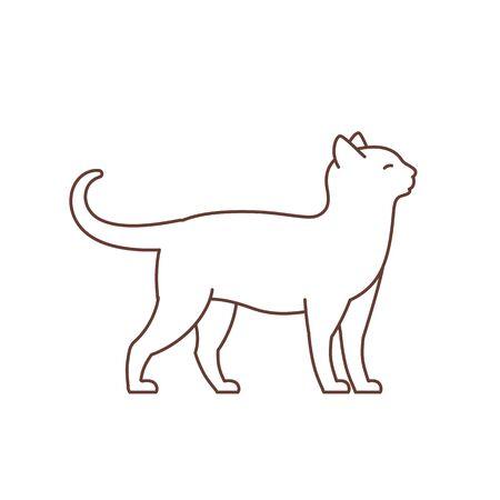 Adult elegant cat. Çizim