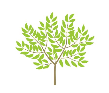 Ordinary tree. Not a big bush. Small thin tree plant. Green leaves and branches. Flat vector color Illustration clipart.  イラスト・ベクター素材
