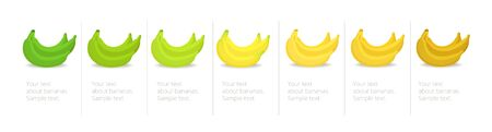 Banana ripeness stages infographics chart. Bunch of bananas colour gradation set. Ripening plantains. From green to yellow and brown. Animation period progression. Vector illustration.