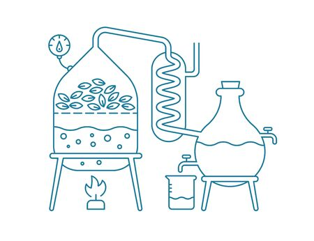 Fabrication d'huiles essentielles. Distillations production d'huiles aromatiques Substances de parfumerie Equipement de distillerie. Illustration vectorielle plane contour bleu ligne.