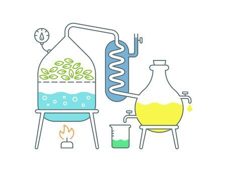 Herstellung von ätherischen Ölen. Destillationen Aromaölherstellung Parfümerie-Substanzen Destilliergeräte.