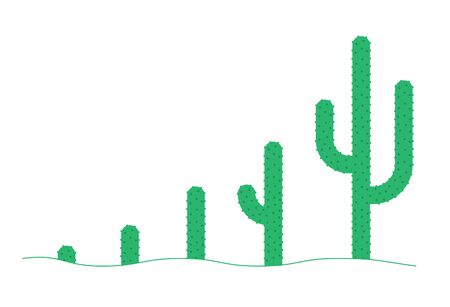Cactus phases set. The peyote plant life cycle. Growth stages. Ripening growing period. Vector Infographic flat illustration. Illustration