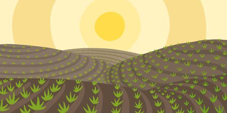 Agricultural field landscape. Growing young plant shoots. Plowed earth. Brown dirt. Crops began to sprout in the spring soil. Vector colour hand-drawn.